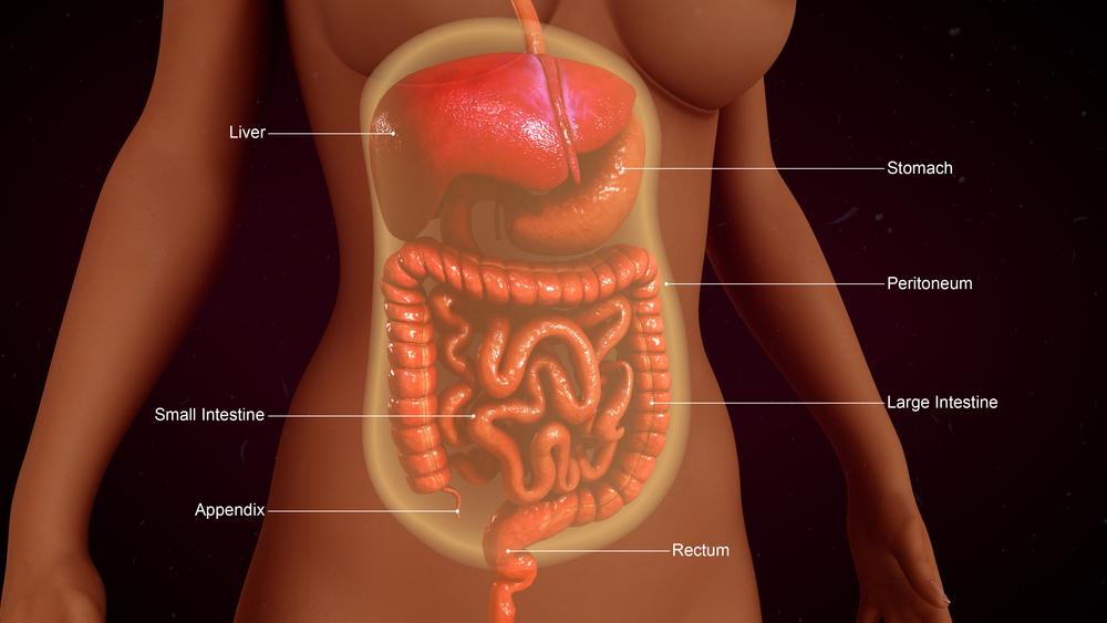 Peritoneal Cancer Detection Diagnosis More